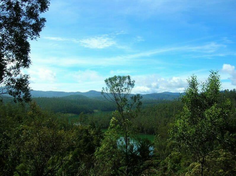 Scenic view of Nilgiri Hills Tamil Nadu